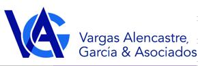 Logo vag